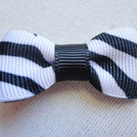 Zebra Bitty Bow by djcjlw on Etsy