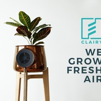 Clairy: The Most Amazing Natural Air Purifier
