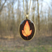 Real leaf necklace - Red leaf on black background - Pressed autumn leaf jewelry - Nature inspired necklace - Botanical pendant - Oval bronze