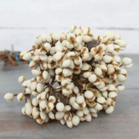 Preserved Tallow Berries in Cream - 3 oz Bunch