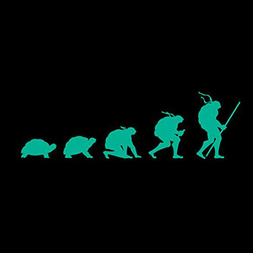 'Evolution' Funny Transformation Turtle Parody - Vinyl Sticker