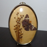 Vintage Oval Gold Tone Convex Picture Frame 5 x 7 with Butterfly Taxidermy and Dried Flowers - Bubble Glass Frame with Key Hole Top