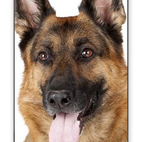 Beautiful Happy German Sheppard - Strong Shepherd Dog iPhone 5 Quality Hard Snap On Case for iPhone 5/5s - AT&T Sprint Verizon - Black Frame