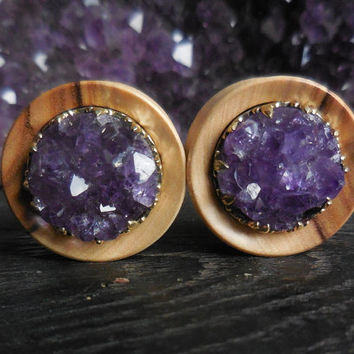 Olive Wood Plugs with Amethyst Druzzy Crown setting