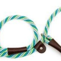 "Mendota Dog Slip Lead & Leash Small 3/8"" x 6' Seafoam"