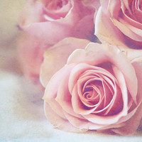 Pink Roses Shabby Chic Decor, Shades Of Pink Rose Bouquet Photograph, Color Fine Art Photography 8x10 Wall Print