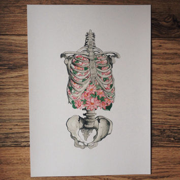 Ribs, lungs, flowers, skeleton, print, anatomy art, water lily in the lung, Foam of the Days, Boris Vian, human skeleton, breath, drawing
