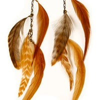 Gilded Lily Goods Caramel Feather Earrings