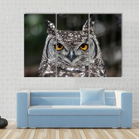 Spotted Eagle Owl With Large Round Yellow Eyes Canvas