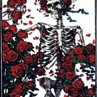 Grateful Dead Skeleton with Roses Classic Hippie Rock Music Postcard Poster Print 11x14:Amazon:Kitchen & Dining