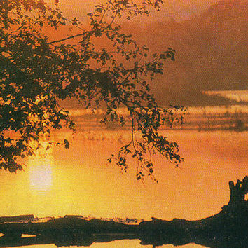 The Lake Surface. Kronotsky Nature Reserve (Photo I. Weinstein) Vintage Postcard - Printed in the USSR, «Soviet Russia», Moscow, 1976