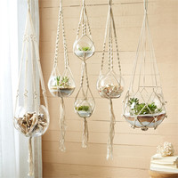 Macrame Plant Hangers - Set of Five