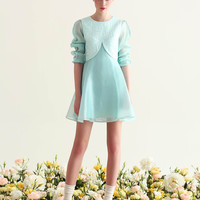 Floral Embroidered Long-Sleeve Chiffon Dress