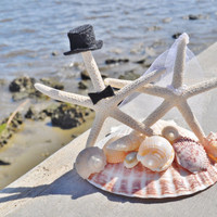 Bride and Groom Cake Topper White Pencil Real Starfish on a Giant Real Scallop