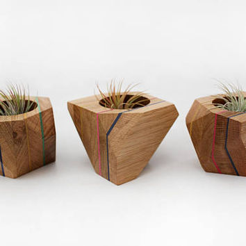 Geometric Wood Planter, cactus holder, airplants, succulent holder, recycled, housewarming gift, planter made from oak and veneer