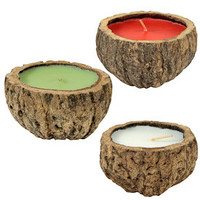 Brazil Nut Exotic Scented  Candles from Peru