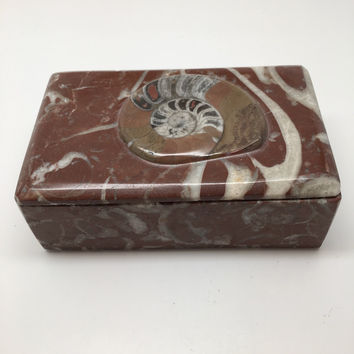 "586g, 5""x3""x2"" Rectangular Fossils Ammonite Red Jewelry Box @Morocco, MF651"