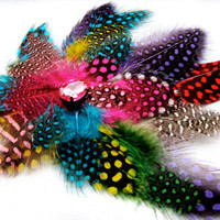 Candy Raver Feather Fascinator Polkadot Rainbow by FeatherFunded