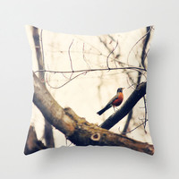 Throw Pillow Cover Robin Red Breast photo Indoor Outdoor Pillow Covers home decor nature tan brown rust rustic bird abstract earth tones