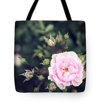 "You had me at hello - pink rose photo Tote Bag for Sale by Ivy Ho (18"" x 18"")"