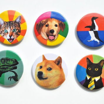 "Meme Animals Six 2.25"" Button Set: Doge, Philosoraptor, Bad Advice Cat, Advice Dog, Awkward Awesome Penguin, Business Cat"