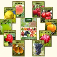 ZLKING 550 Pcs Fresh Mix Fruit Seeds Variety Of Fruit Bonsai Home Garden Plants Strawbreey Lemon And Other Seed Easy To Grow