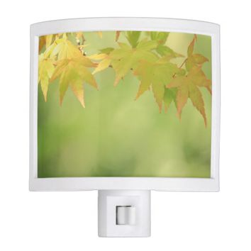 Dreamy Autumn Maple Zen Garden Thanksgiving Night Light