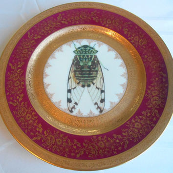 Altered/Upcycled Red and Gold Vintage Cicada/Bug Plate, Foodsafe or Display Dish, Great Christmas Gift! Other Motifs Available!