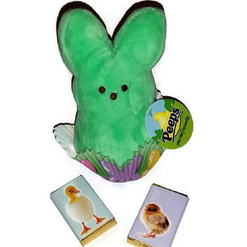 Peeps Easter Bunny Cup Gift Basket Stuffie Cute Mint Green Plush Rabbit Toy Plushie Collectible Easter Chick Chocolate Squares Gift Under 10