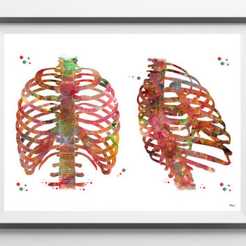 Thorax watercolor print anatomy art Rib cage poster chest bones anterior and posterior view medical art thoracic cavity thoracic wall print