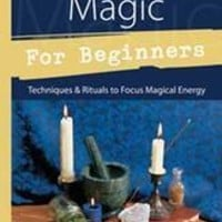 Practical Magic for Beginners by Brandy Williams