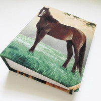 Bay Horse photo album 100 4x6 photos.