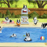 Boston Terrier Pool Party art print by Brian Rubenacker