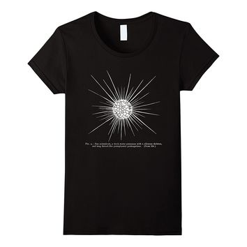 Vintage Science Sun Animalcule Actinophryid Tee T-shirt