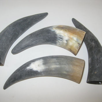 4 Cow horns...E4A69....Natural colored raw  cow horns...........ox horns