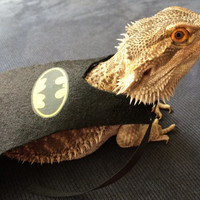 Handmade SuperMan and BatMan Capes for Bearded dragons in Two sizes