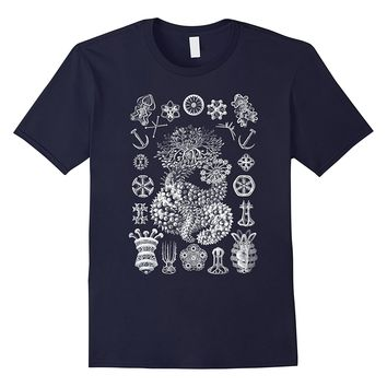 Ernst Haeckel Thuroidea Sea Cucumbers Tee T-shirt