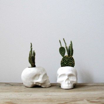 Ceramic Skull Planter   Perfect For Cactus Succulent Or Air Plant