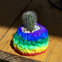 Cactus Brainbow Kit by Medusa13 on Etsy