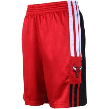 adidas Chicago Bulls Red On-Court Pregame Shorts