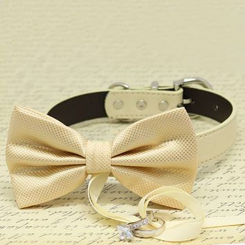 Ivory Dog Bow Tie ring bearer Collar, Pet wedding, proposal, Trendy, Made with Love