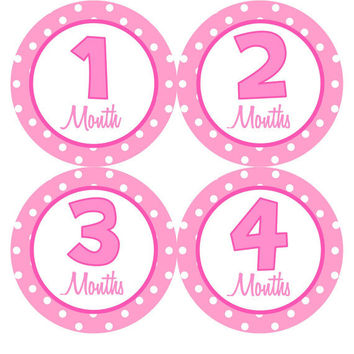 Monthly Onesuit Stickers Girl Baby Month Stickers Hot Pink Month Sticker Monthly Onesuit Stickers Girl Baby Shower Gift Photo Prop -Kinley