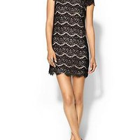 Ares Lace Dress