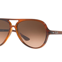 Ray-Ban CATS 5000 CLASSIC Tortoise, Injected Gradient RB4125 | Ray-Ban® USA