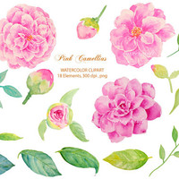 Wedding Clipart - Watercolor pink camellias pink flowers printable instant download for  wedding invitations, cards