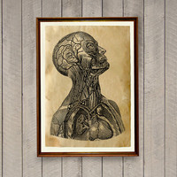 Head anatomy poster Gothic print Macabre decor AK634