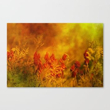 Autumn Wonder Canvas Print by Theresa Campbell D'August Art