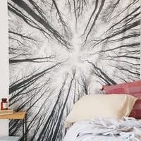 Locust Tree From Below Boho Wall Tapestry