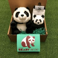 Panda Party Package
