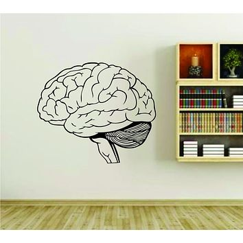 Brain Medical Science Anatomy Vinyl Wall Decal Sticker